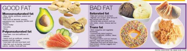 good-fat-bad-fat.jpg